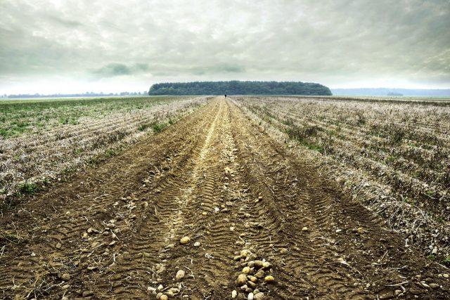 50% veškeré zemědělské půdy je ohroženo vodní erozí